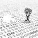 Brechas de seguridad de datos personales en España en el 2019: tipología, causas, afectados, y origen por CCAA